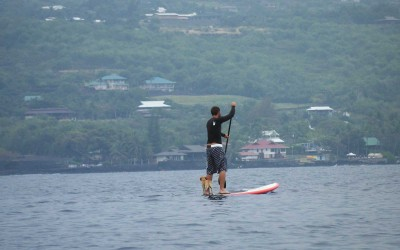 Stand Up Paddleboarding with Dog in Kona