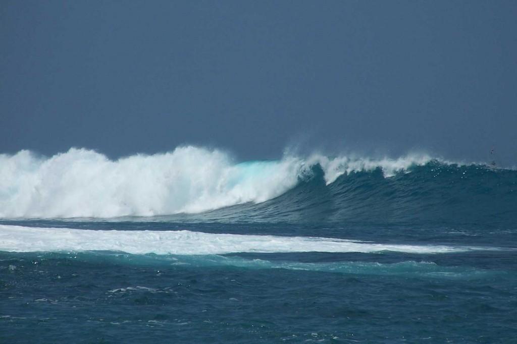 Kona Coast Wave