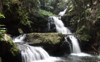 Hawaii Tropical Botanical Gardens Waterfall