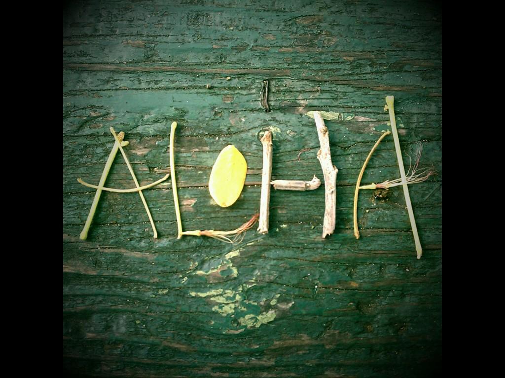 Aloha Sticks