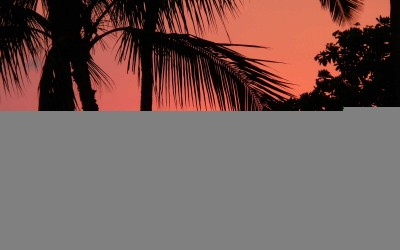 Orange Hawaii Sunset