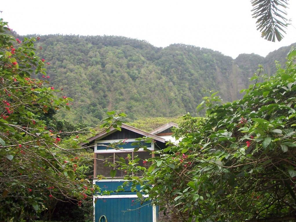 Hawaii Shack