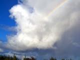 Honokaa Rainbow