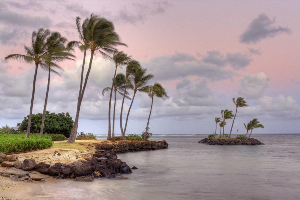 Kahala Seascape