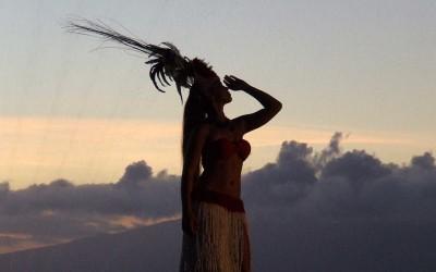 Maui Luau Storyteller