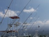 Sportfishing Setup