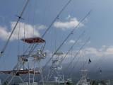 Sportfishing Setup