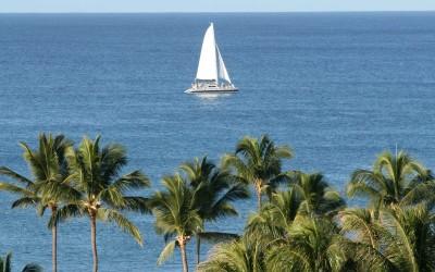Oahu Hawaii Sailbat with Palm Trees