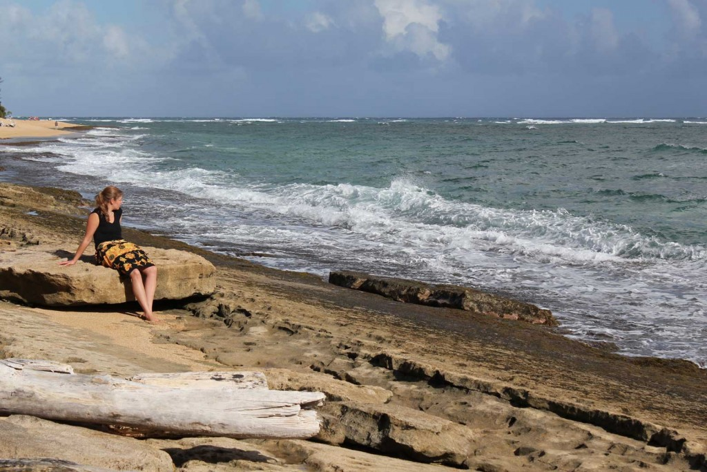 Stormy Kauai Coast