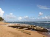 Kauai Kapaa Beach Coastline