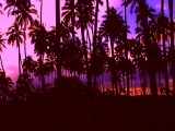 Classic Kaua'i Purple Sunset