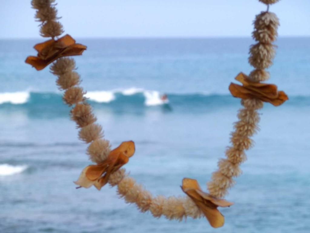 Lymans Surf Lei, Kailua-Kona Hawaii