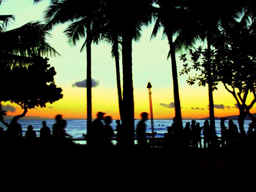 Waikiki Sunset Activity