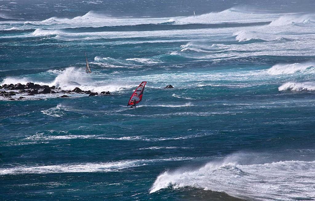 Maui Windsurfers