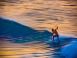 Surfer in Motion, Hawaii