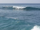 Solo Surfer Bottom Turn