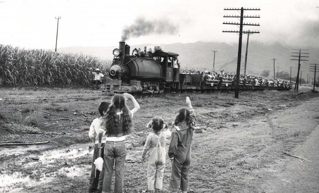 Waialua Agriculture, Oahu #5 Train