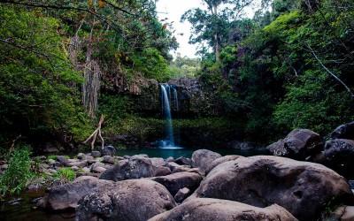 Hana Rainforest Waterfall
