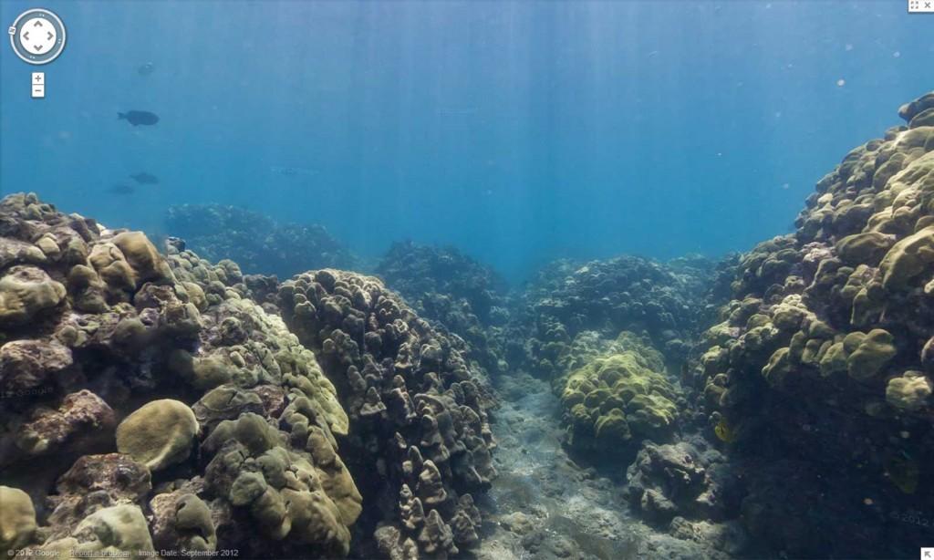 Hanauma Bay Google Maps