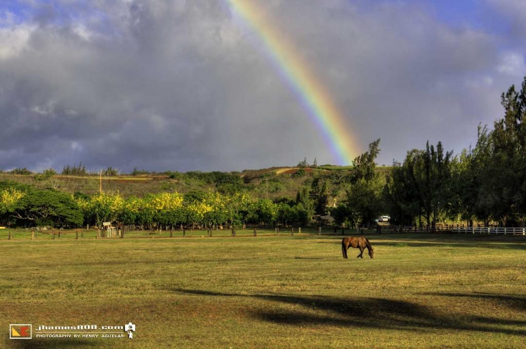 Hawaii Kawailoa Ranch Rainbow