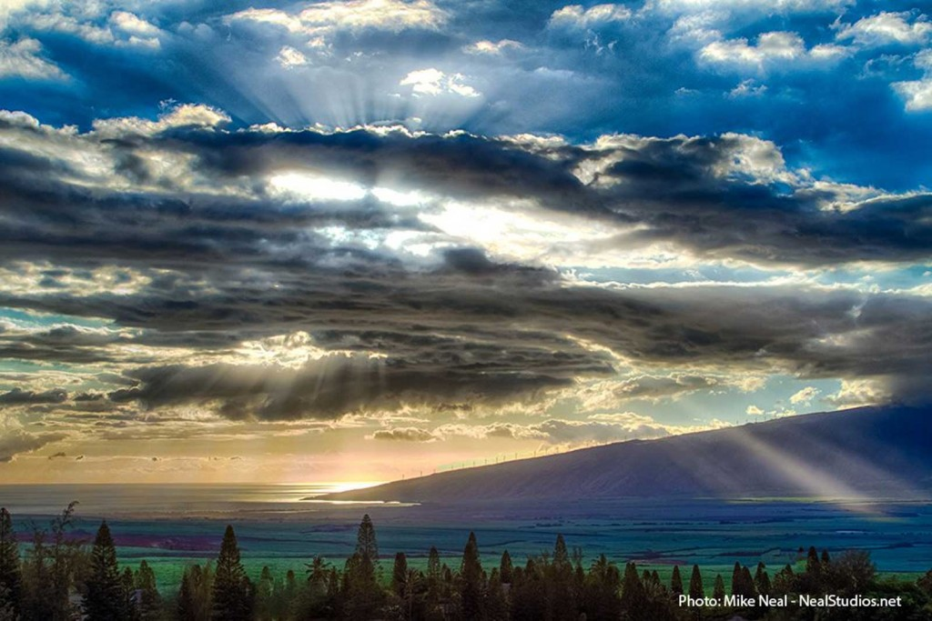 Maui Valley Sun