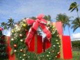 Kauai Christmas Wreath, Hawaii