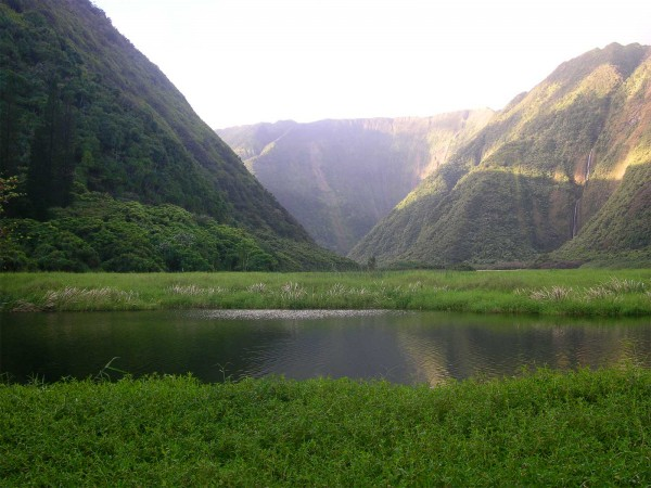 Waimanu Valley
