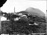 Hana Maui Plantation