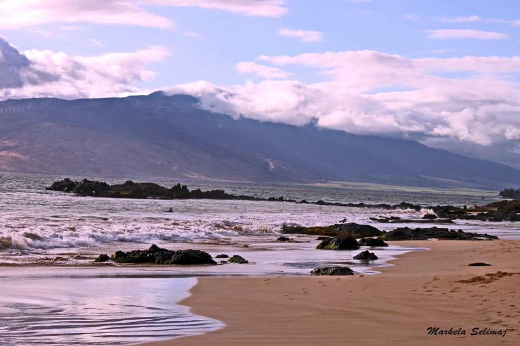 Maui Beaches People Maui Kamaole Beach