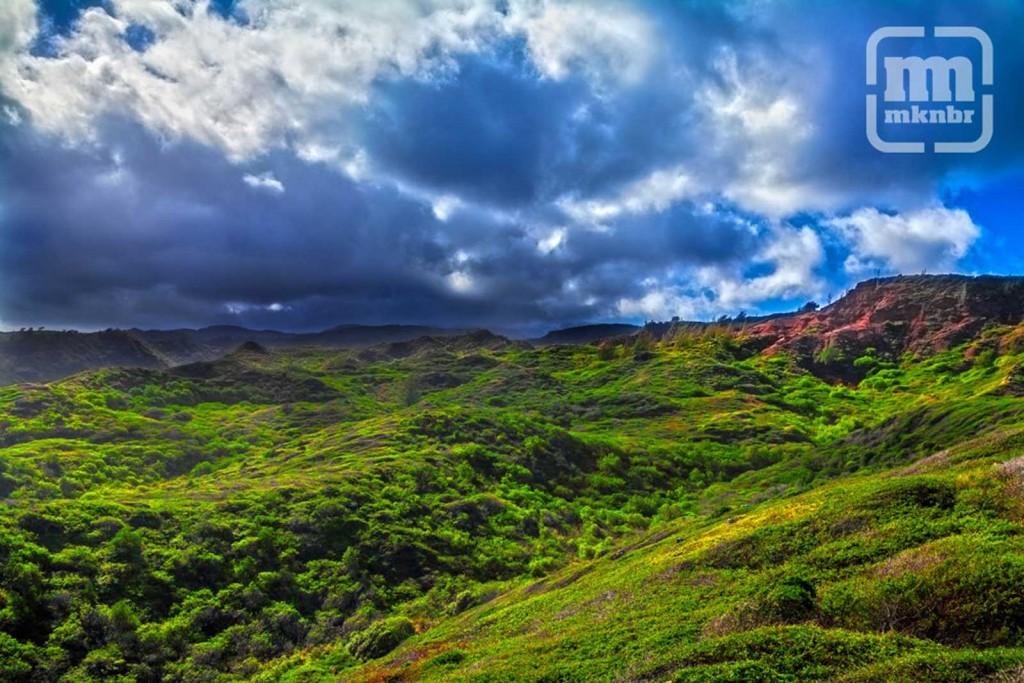 Poelua Maui