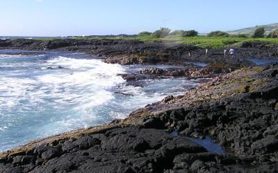 Punalu'u Black Sand Beach, Hawaii