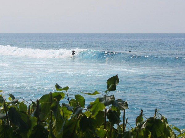 Kahaluu Beach Surfing