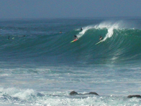 waimea-bay-surfing