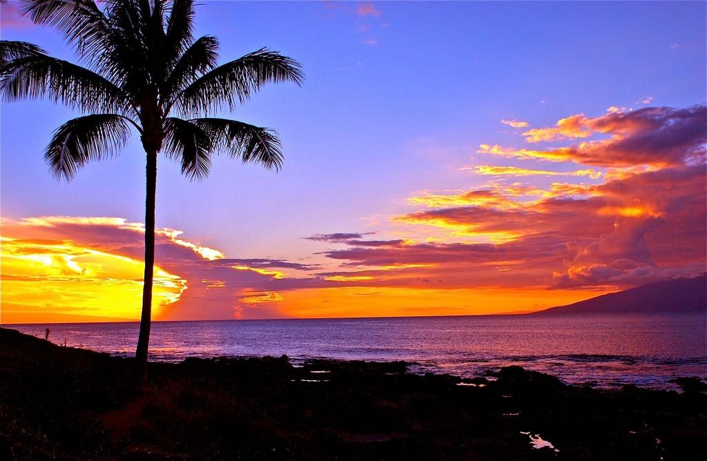 ナピリ湾サンセット ハワイの写真