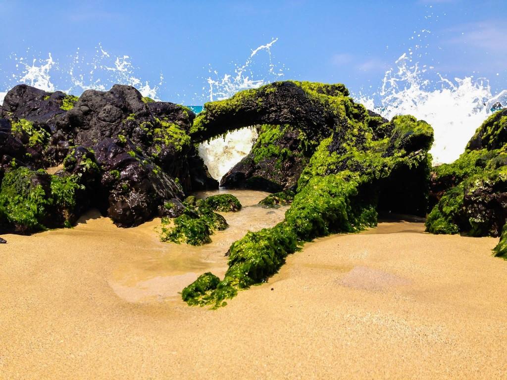 Beach, Lava, Ocean